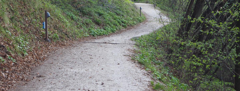 Der Aufstiegsweg fast eine Promenade