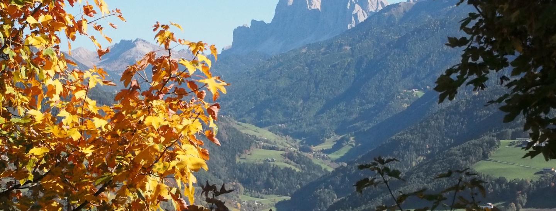 Am Abstieg nach Leitach/Klausen