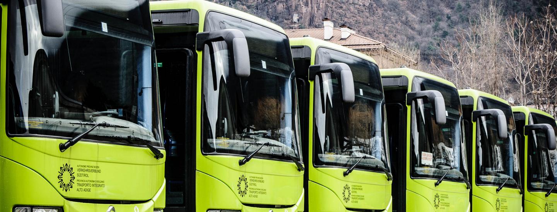 Sad, autobus, Tpl