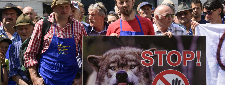 Wolfsprotest 5. Juni