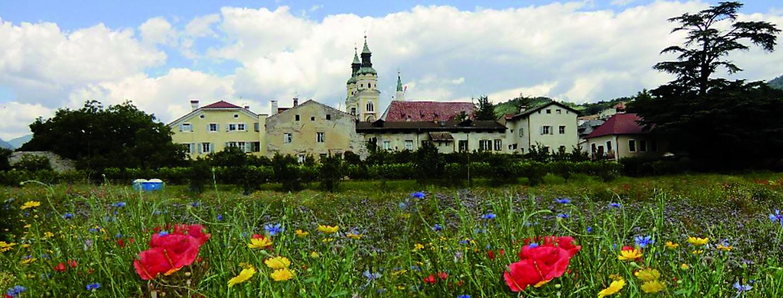Hofburggarten