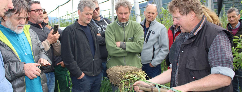Thomas Hafner zeigt den mit Roggeneinsaat angereicherten Boden