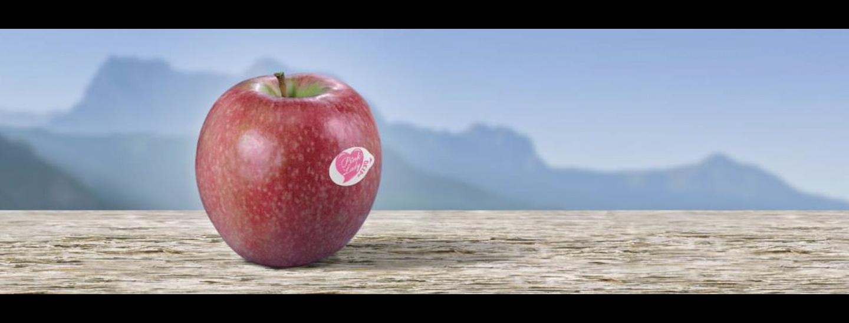 pink_lady.jpg