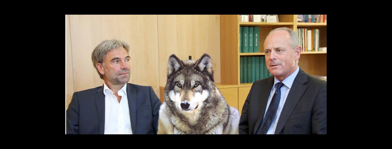 wolf.jpg