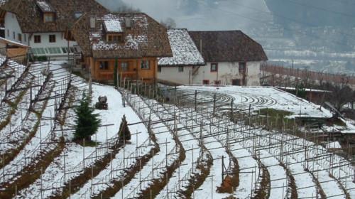 06_winter_beim_fohrner.jpg