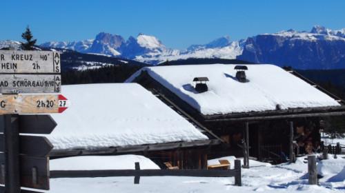 Die Hauserberg-Alm und die Kulisse der Dolomiten