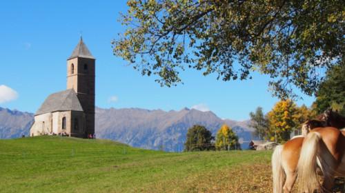 Kirche und Haflinger