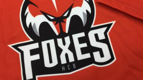 HC Bozen-Bolzano Foxes