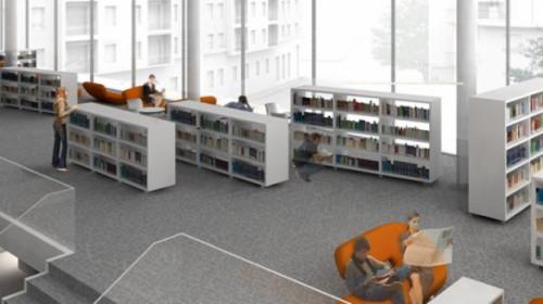 polo bibliotecario