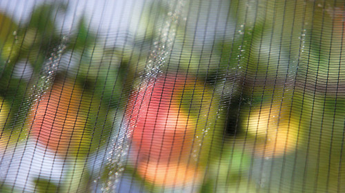bio-sudtirol-apfel-privacy-6b.jpg