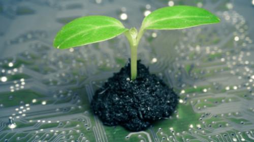 blog_digital_sustainability.png