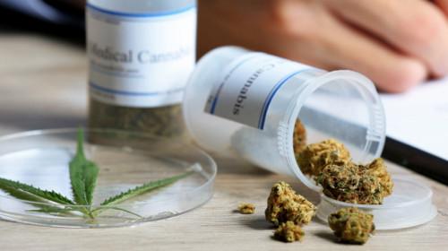 cannabis-vs.-ritalin-3.jpg