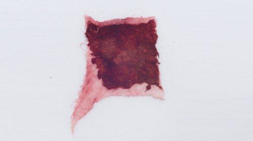 "Exemplar aus der Serie ""Me/at"", Theresa Bader"