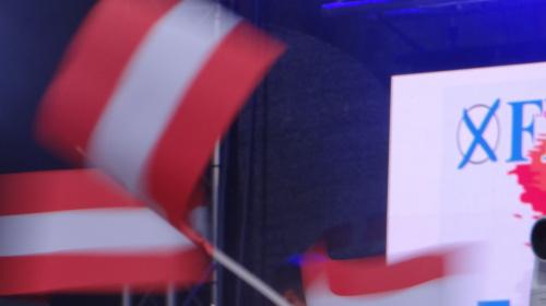 FPÖ Österreichfahnen