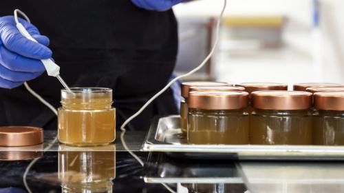 Was im Kitchen Lab entstehen kann