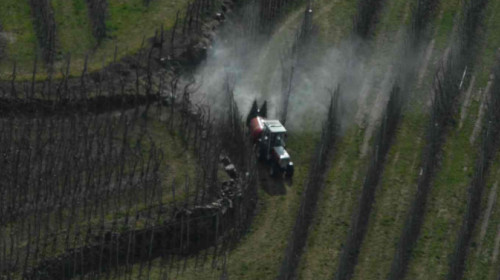 Pestizideinsatz im Obstbau
