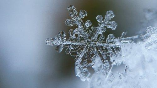 freddo, neve, fiocco