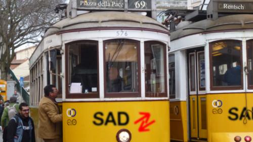 tram_tram.jpg