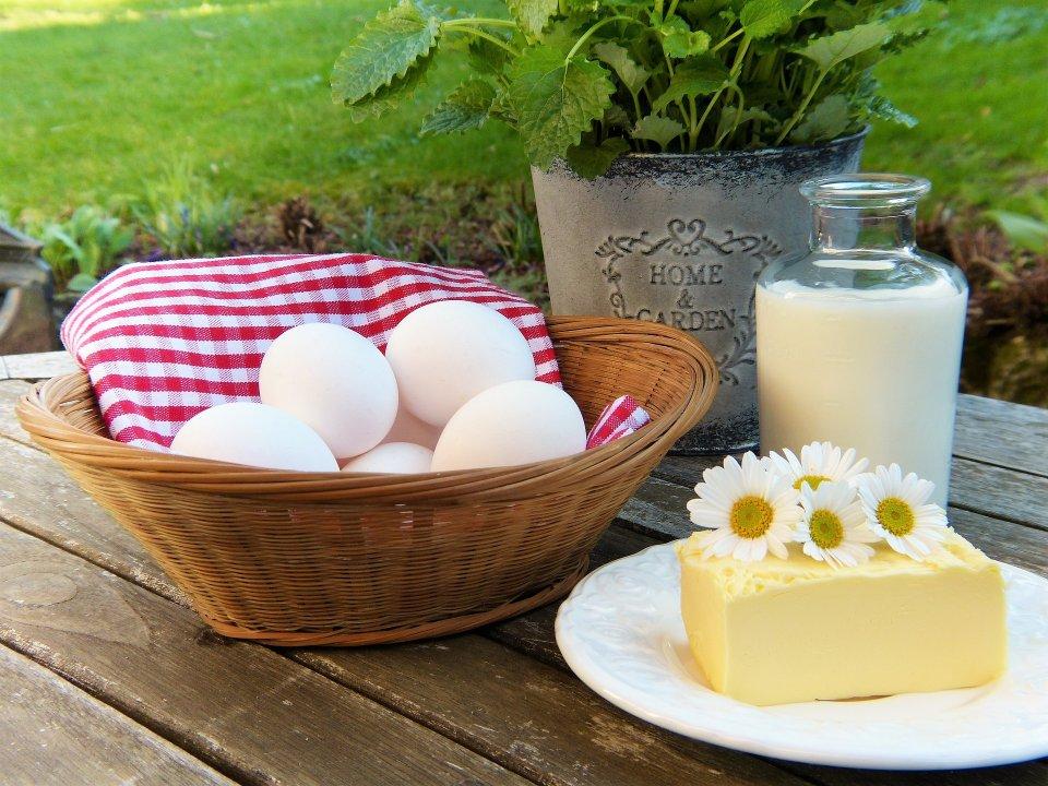 milch lokal eier