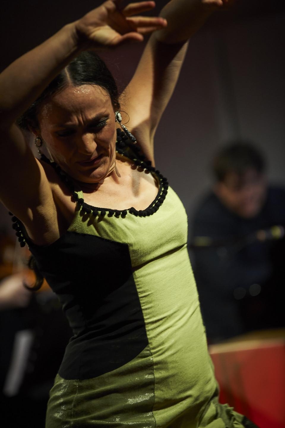 flamenco8