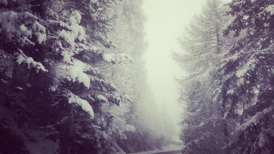 Letzter Schnee Ritten Baumtal