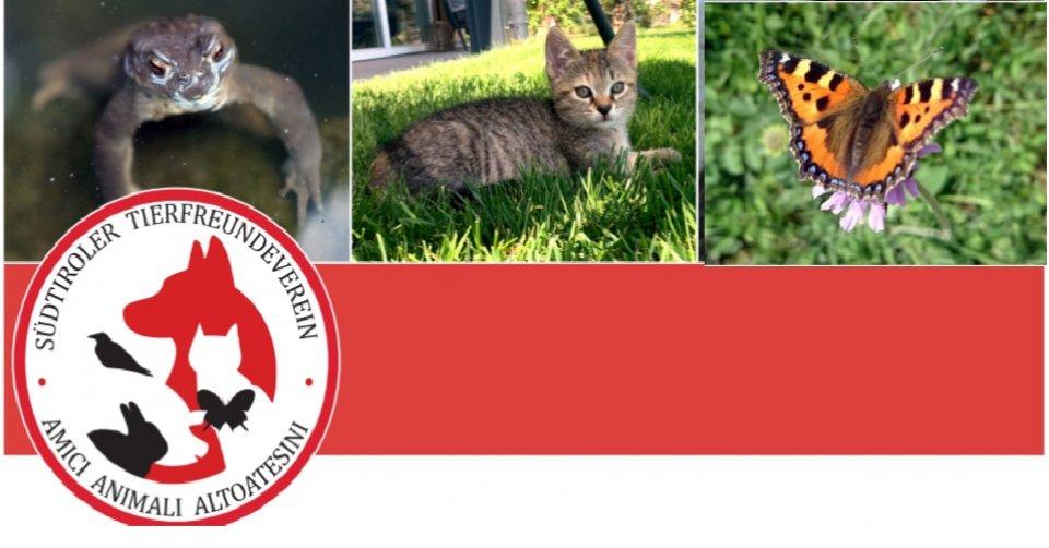 Südtiroler Tierfreundeverein
