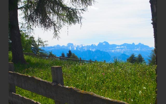Blick von den Fahrerhöfen zu den Dolomiten