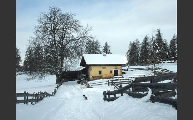 Der Winterle am Salten
