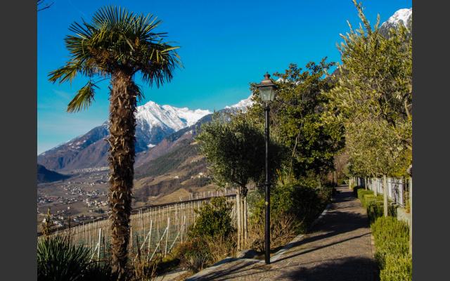Wir beginnen die Wanderung bei der Falknerpromenade in Dorf Tirol