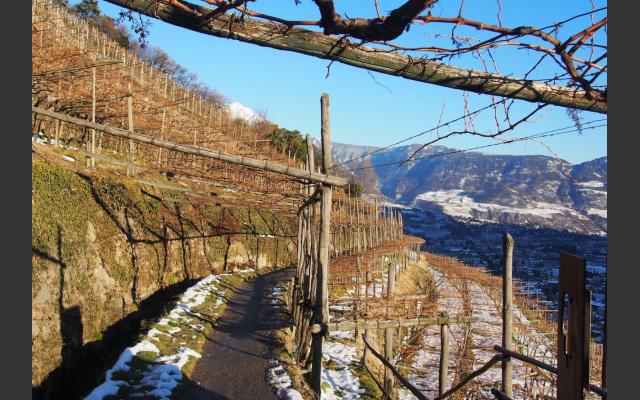 Auch im Winter ist der Weg sehr sonnig