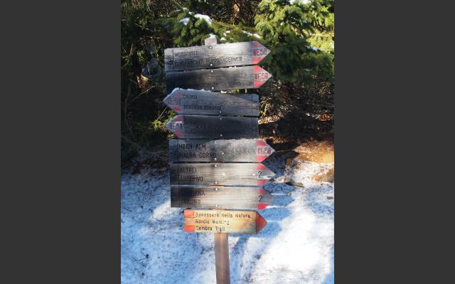 Beste Markierung im Naturpark Trudner Horn