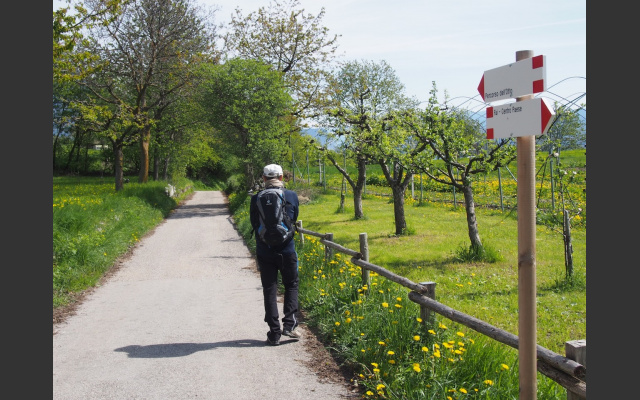 02_Durch Wiesen geht es zum Dorf hinaus