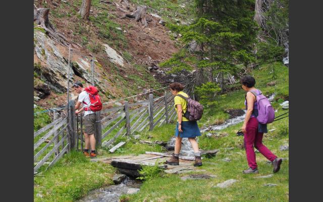 Bach und Brücke kurz vor der Alm
