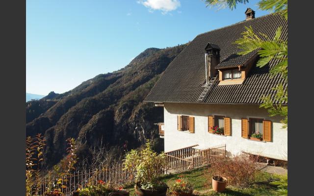 Der schmucke Steinmannhof