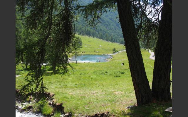 Ein kleiner See am Talbach