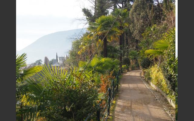 Üppiges mediterranes Grün auch im Winter