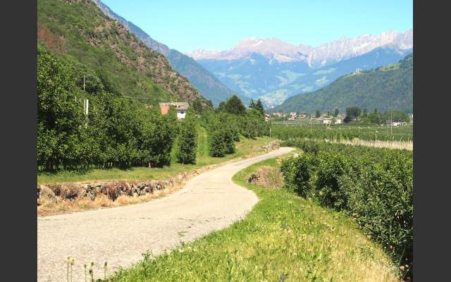 Zufahrt zum Weintal