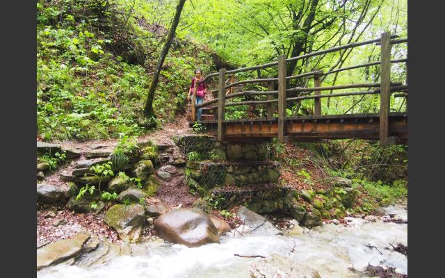 Brücke bei Altenburg