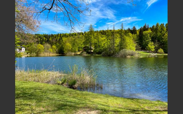 Der romantische Waldsee Lago di Cei