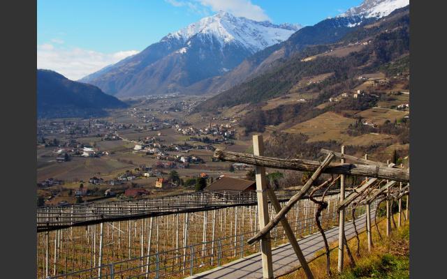 Nach Nordwesten geht der Blick nach Algund, Plars, Partschins und ins Vinschgau