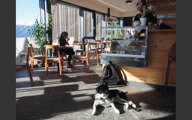 11_cafe_konditiorei_sunnseit_an_der_bergstation.jpg