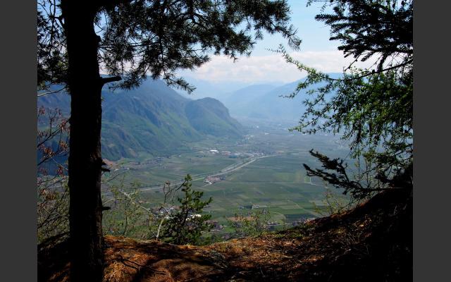 Blick nach Südosten zu den Dolomiten