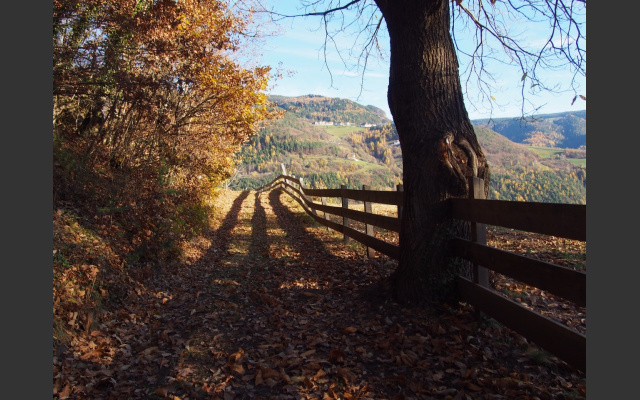 Herbstimpressionen am Rückweg