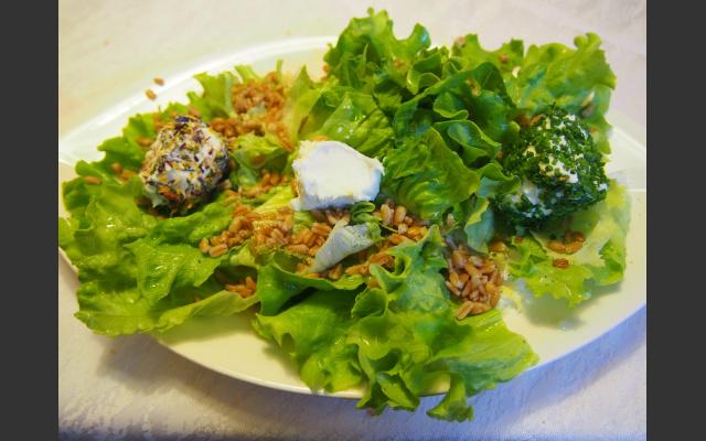 Vegetarisch-gut: Vorspeise beim Lanzenschuster