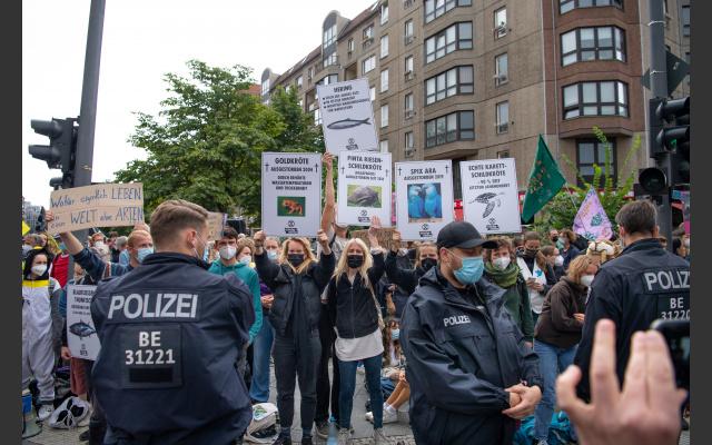 August RiseUP Berlin 2021
