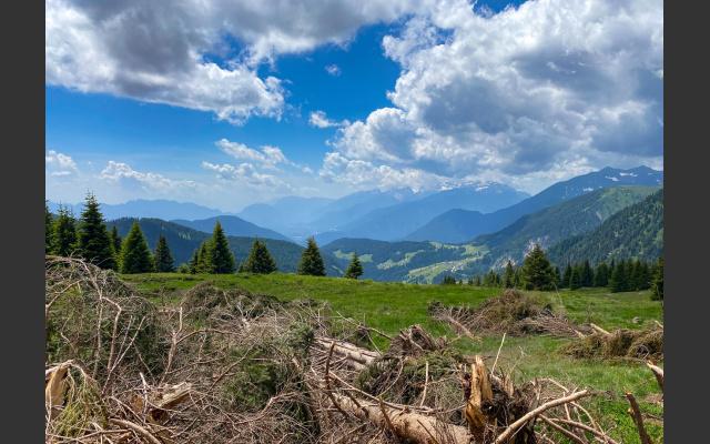 Blick Adamello - Brenta