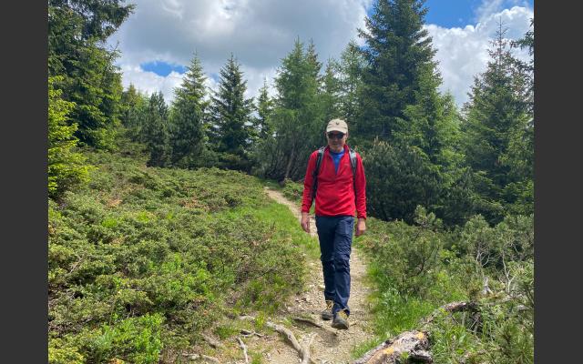 Deutschnonsberg - Waldgrenze