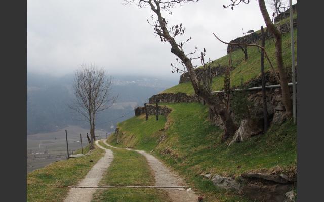 Am Naturnser Sonnenberg
