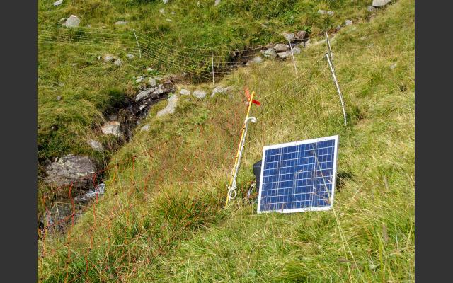 Sonnenkollektoren speisen den Elektrozaun