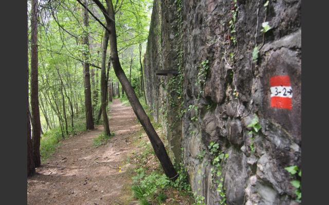 Im Bachbett des Schwarzenbaches